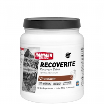 Hammer Nutrition Recoverite Recovery Drink * optimale 3:1 Formel*